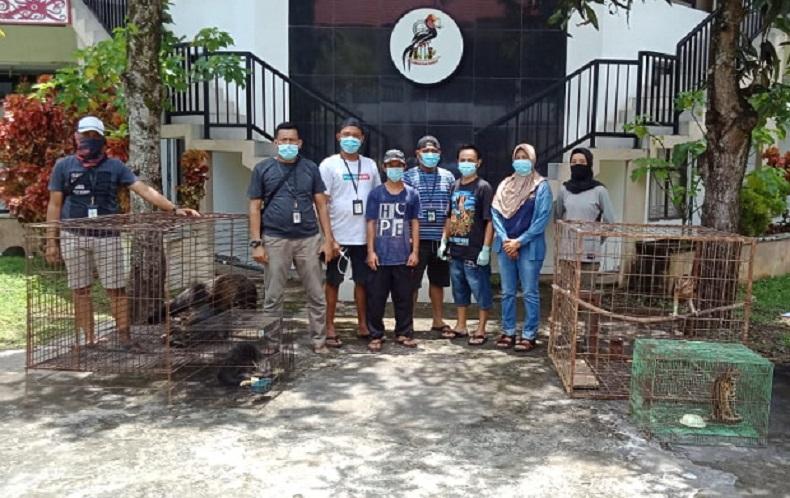 Polda Kalbar mengamankan pemilik Elang Jawa tanpa izin sah di Kabupaten Sekadau. (iNews.id/Faisal Abubakar)