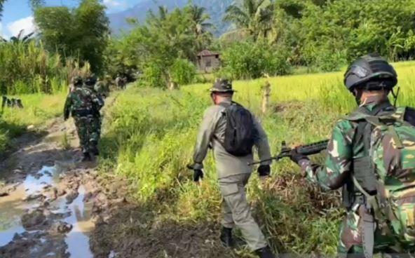 Satgas Madago Raya menyisir lokasi usai kontak tembak dengan kelompok teroris MIT Poso. (Foto: Antara)