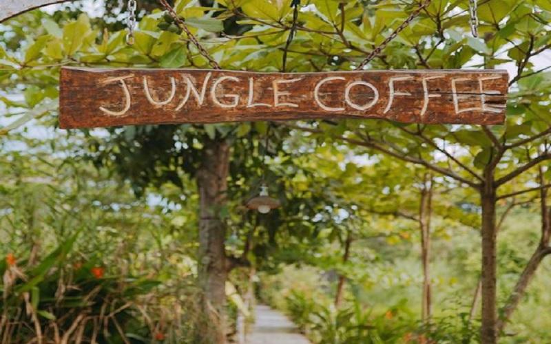 Tempat Nongkrong Terdekat di Kalimantan Selatan, Jungle Coffee Bar (Foto: Instagram/Jungle Coffee Bar)