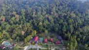 Intip Penginapan Kawasan Wisata Hutan Hujan Tropis Kutai Kartanegara