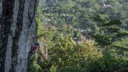 Menikmati Keindahan Alam dengan Mendaki Gunung Api Purba Nglanggeran