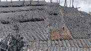 Pascaerupsi Kawah Sileri, 20 Hektare Lahan Pertanian Tertutup Lumpur