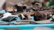Arkeolog Teliti Sumur Kuno Diduga Peninggalan Kerajaan Majapahit