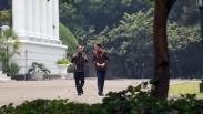 Bertemu Presiden Jokowi, PM Belanda Tanam Pohon Damar di Istana Bogor