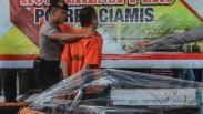 Polisi Tangkap Pelaku Pembalakan Liar, Kerugian Negara Mencapai Rp1,2 Miliar