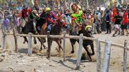 Melihat Serunya Pacuan Kuda Tradisional di Jeneponto