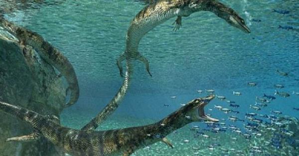 Ilmuwan Temukan Kadal Purba yang Memburu Perairan Dangkal