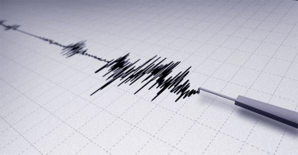Gempa Magnitudo 3,8 Guncang Pesawaran Lampung, Pusat Gempa di Darat