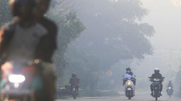 Kebakaran Lahan dan Hutan, Aceh Barat Tetapkan Status Siaga Darurat Bencana Asap