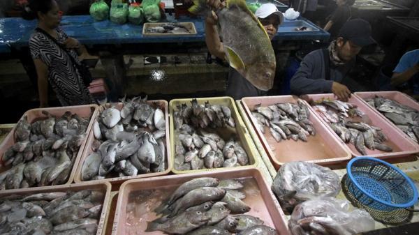 Setelah Huanan dan Xinfadi, China Kini Tutup Pasar Ikan Liaoyu karena Covid-19