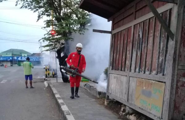 Awal Tahun 2020, DBD di Kabupaten Kulonprogo Capai 145 Kasus