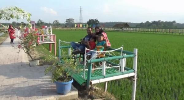 Areal Persawahan di Desa Punden Rejo Disulap jadi Destinasi Wisata Alam