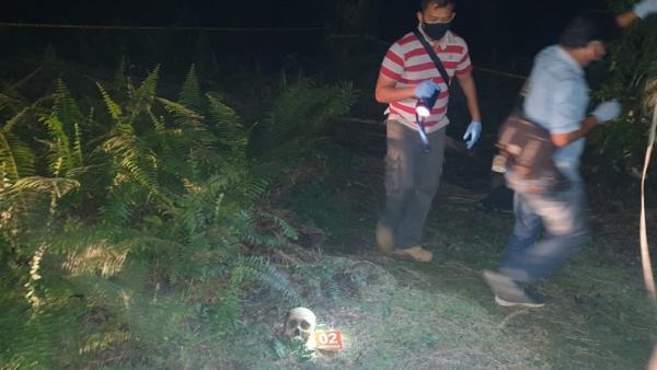 Panen Sawit, 2 Pekerja Kaget Temukan Kerangka Manusia Berkaos Abu-Abu