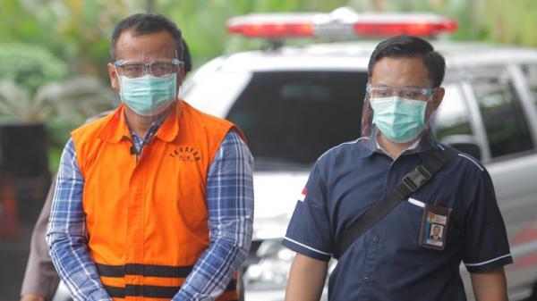 Suap Ekspor Benih Lobster, KPK Menduga Ada Tindak Pidana Korupsi Lain yang Berkaitan