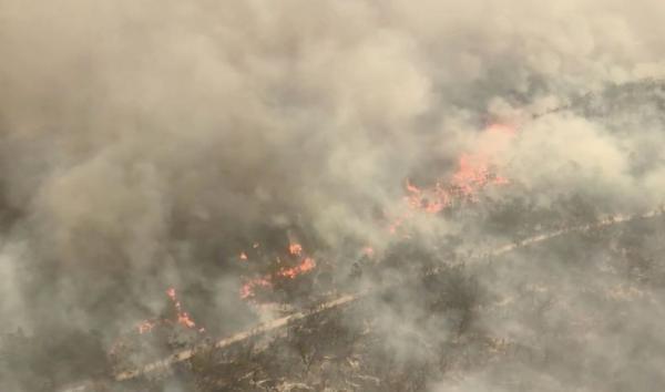 Kebakaran Hutan Ancam Permukiman Warga di Situs Warisan Dunia Pulau Fraser Australia