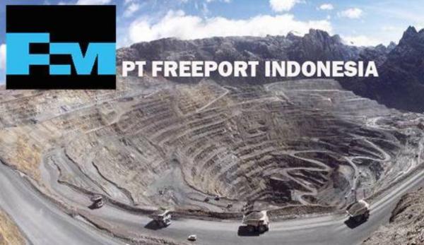 Freeport Didekati Perusahaan China Bangun Smelter Tembaga di Halmahera