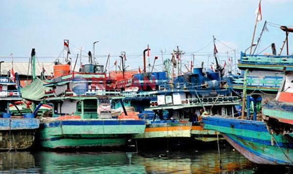 KKP Legalkan Alat Cantrang, Nelayan Kecil dan Ekosistem Laut Terancam