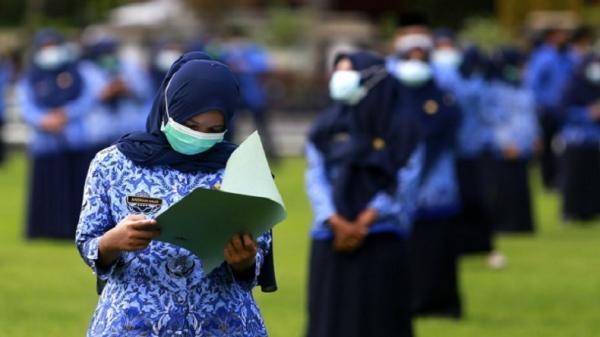 Kabar Gembira, 242 Pelamar Lulus CPNS Kabupaten Gorontalo