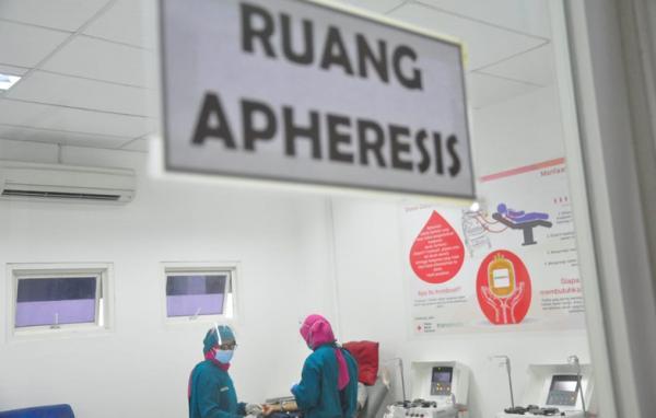 Luar Biasa, Pendonor Plasma Konvalesen di Jateng Capai 871 Orang