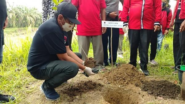 Rayakan Ultah ke-74 Megawati, PDI Tanam 74.000 Pohon di Sumut