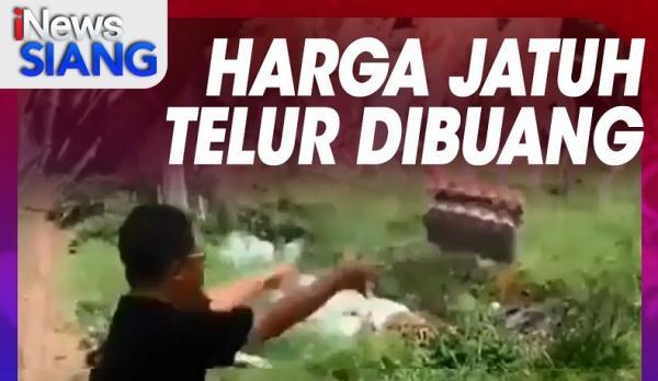 """""""iNews Siang"""" Live di iNews dan RCTI+ Selasa Pukul 11.00: Harga Jatuh, Telur Dibuang"""