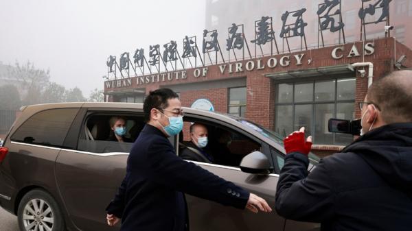 Selidiki Asal-usul Covid di Wuhan, Peneliti WHO Kaget