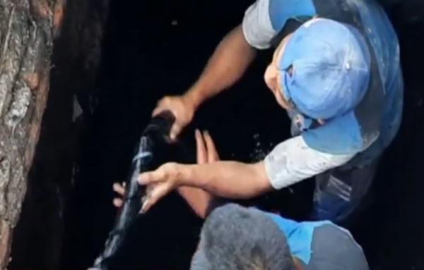 Video Tumpukan Limbah Kabel Ditemukan Menyumbat Saluran Air di Kemayoran