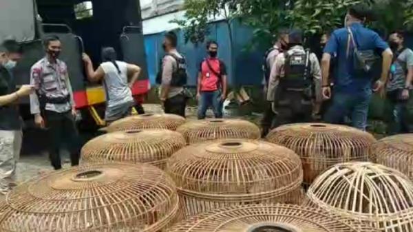 Polisi Gerebek Tempat Judi Sabung Ayam dan Adu Kemiri, 25 Pria di Tasikmalaya Ditangkap