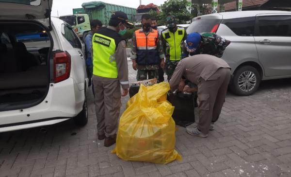 Karantina Pertanian Semarang Gagalkan Penyelundupan Ratusan Burung asal Sampit