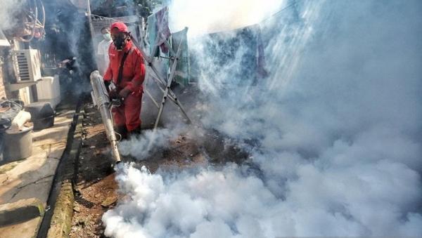 20 Kasus DBD di Ambon sejak Januari hingga April 2021, Masyarakat Diminta Jaga Kebersihan