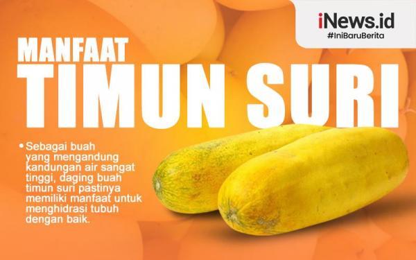 Infografis Manfaat Timun Suri