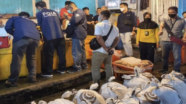 Gerebek Gudang di Pasar Induk Jakabaring, Polisi Sita 8,3 Ton Ikan Giling Berformalin