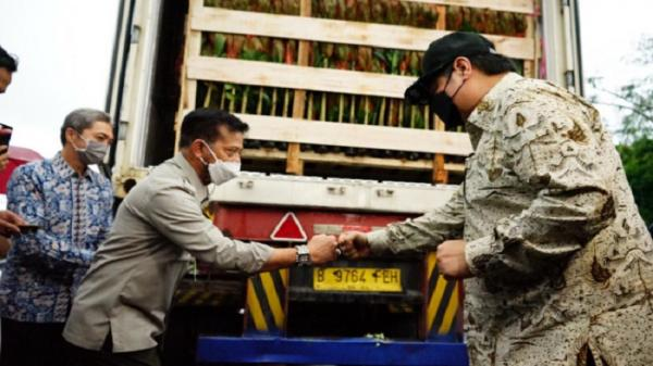 Menko Airlangga : Genjot Ekspor Florikultura, Penuhi Ceruk Pasar Dunia