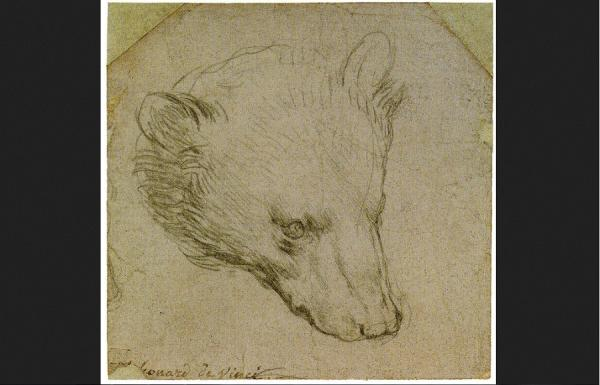 Gambar Kepala Beruang pada Sehelai Kertas Ini Bernilai Rp236 Miliar, Siapa Pembuatnya?