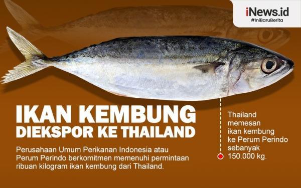 Infografis Thailand Pesan Ikan Kembung Ratusan Ton ke Indonesia