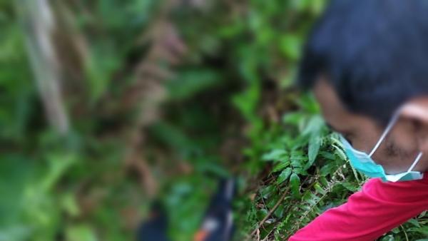 Diantar Mengaji, Bocah SD Ditemukan Tewas Penuh Luka Bacok di Bengkalis