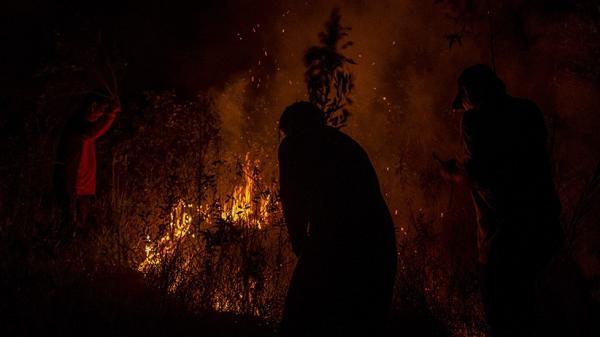 Kemarau Tiba, Perhutani KPH Bandung Utara Waspadai Kebakaran Hutan