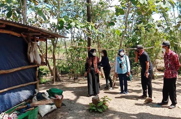 Cek Warga yang Tinggal di Kandang Sapi, Istri Bupati Gunungkidul Akan Bantu Pembangunan Rumah