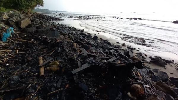 Dinas DLH Ambil Sampel Limbah Hitam Pekat yang Cemari Teluk Lampung