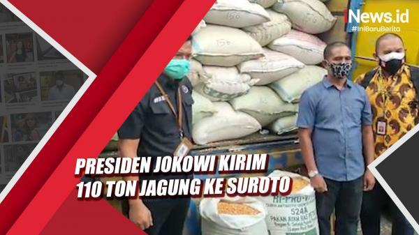 Video Presiden Jokowi Kirim 110 Ton Jagung kepada Peternak Ayam di Blitar