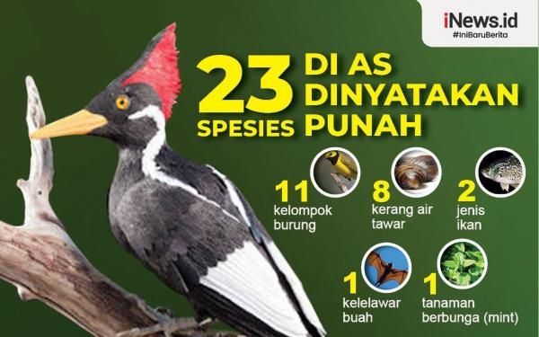 Infografis 23 Spesies Satwa di AS Dinyatakan Punah