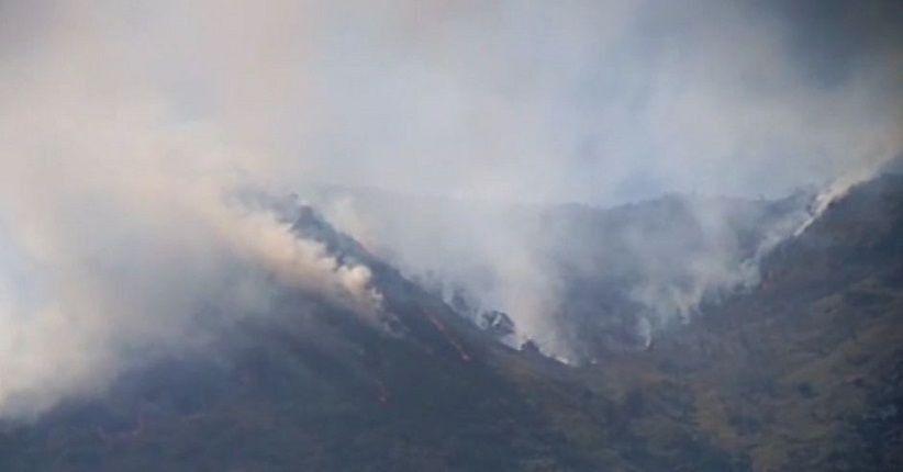 Masuk Kemarau, BMKG Deteksi Kebakaran Hutan dan Lahan di Riau