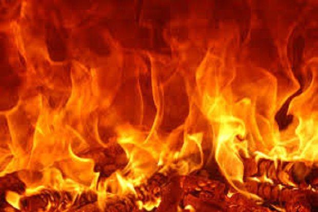Kebakaran Panel Listrik di Tambora, 7 Armada Damkar Dikerahkan Padamkan Api