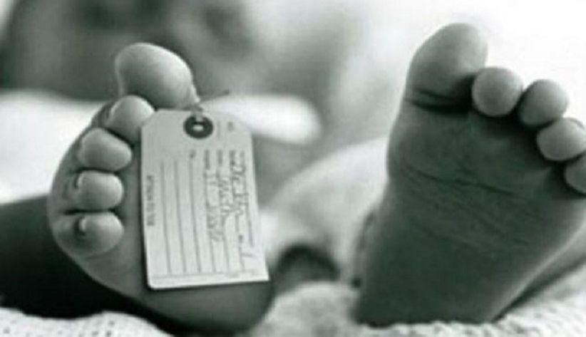 Mayat Bayi Laki-Laki di Kebun Sawit Gegerkan Warga Batanghari