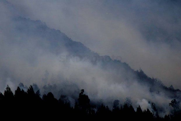 Ancaman Karhutla, BMKG Deteksi 35 Titik Panas di Riau