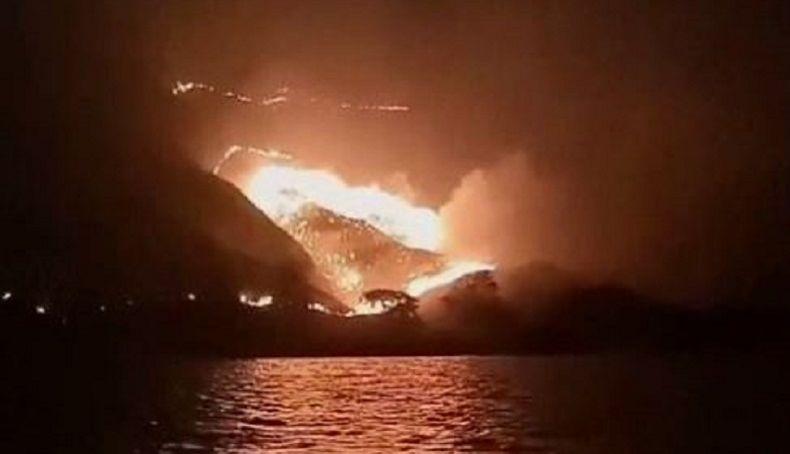 Hutan di Taman Nasional Komodo Terbakar, Operasional Ditutup Sementara