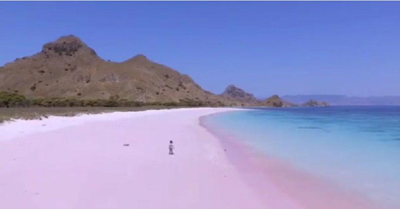 Ternyata, Ini Alasan Warna Pantai Pink TN Komodo Tak Selalu Merah Muda
