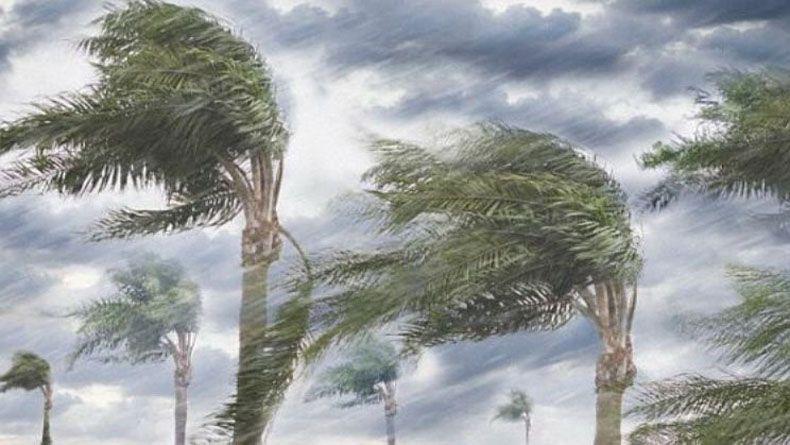 Hujan Lebat Disertai Angin Kencang di Kota Bogor, 47 Rumah Warga Rusak