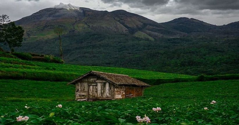 Terpikat Pesona Lereng Gunung Welirang Mojokerto Indah Mirip Swiss