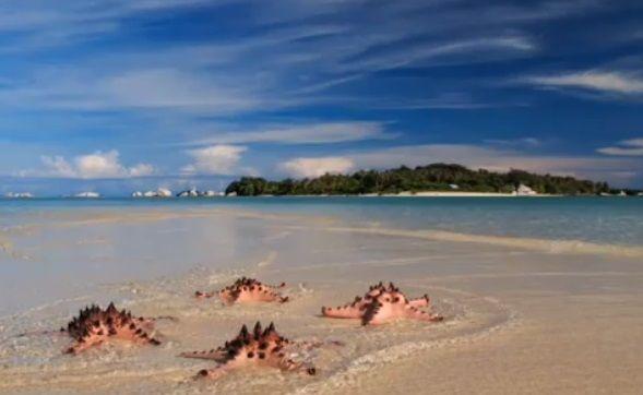 Yuk Jelajahi Pulau Pasir di Belitung, Muncul saat Air Laut Surut